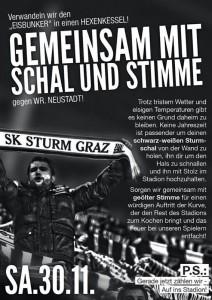 20131130 Sturm-WNSC